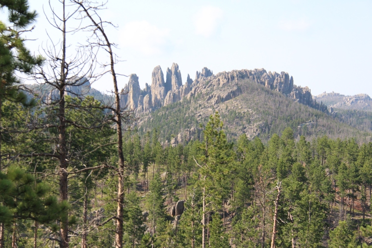 One of the many pictures we took of the gorgeous scenery in The Black Hills.