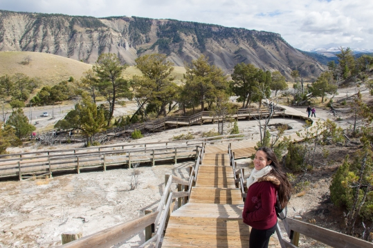 Photo by Tim Trevaskis: Boardwalk to the Hot Springs