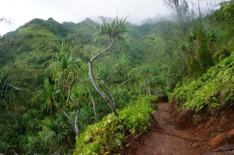 Autumn Aquarius Kauai Hike